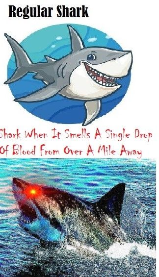 Beware Big Fish