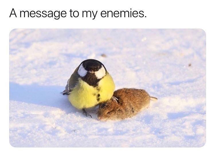 Dear jerks...