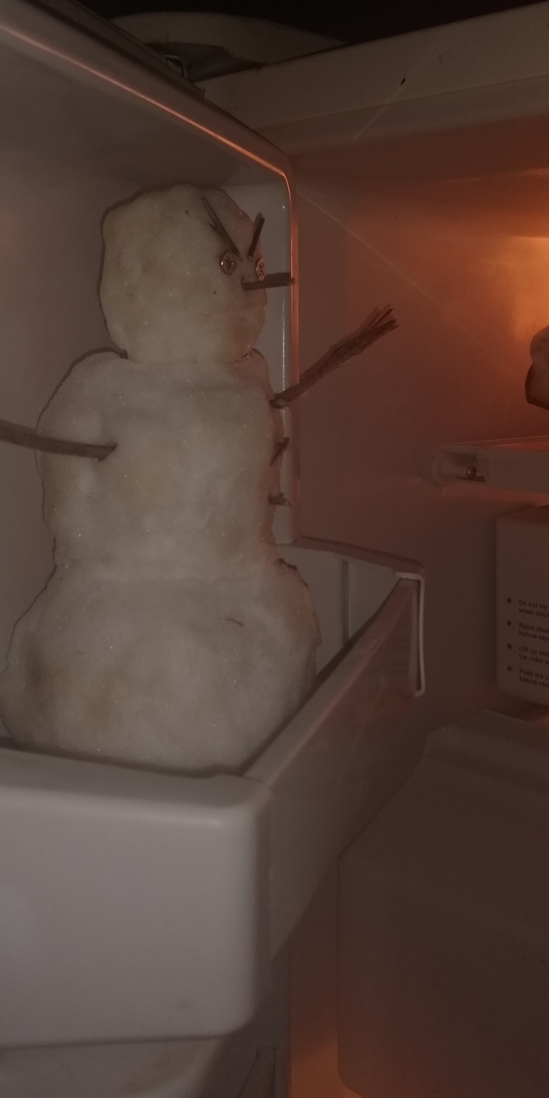 """I remember when I was younger my parents would say """"DON'T PUT THAT NASTY SNOWBALL IN MY FREEZER! YOU CAN DO THAT WHEN YOU GET YOUR OWN!"""" Guess who has a nasty snowman in their freezer"""