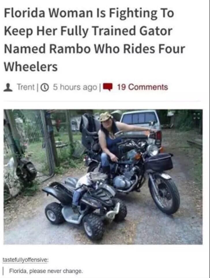 Justice for Rambo.