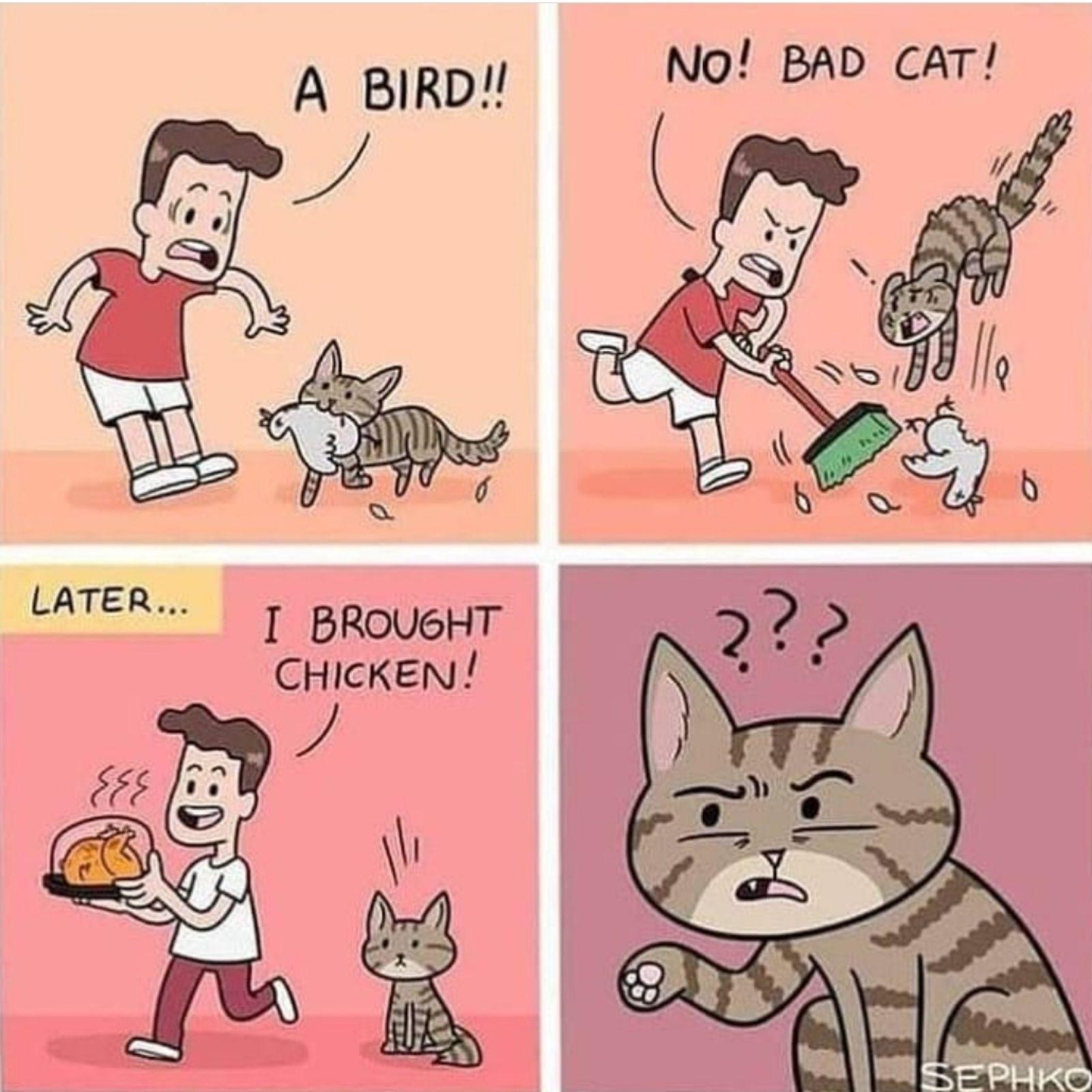 Poultry prejudice