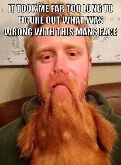 Nice beard man !