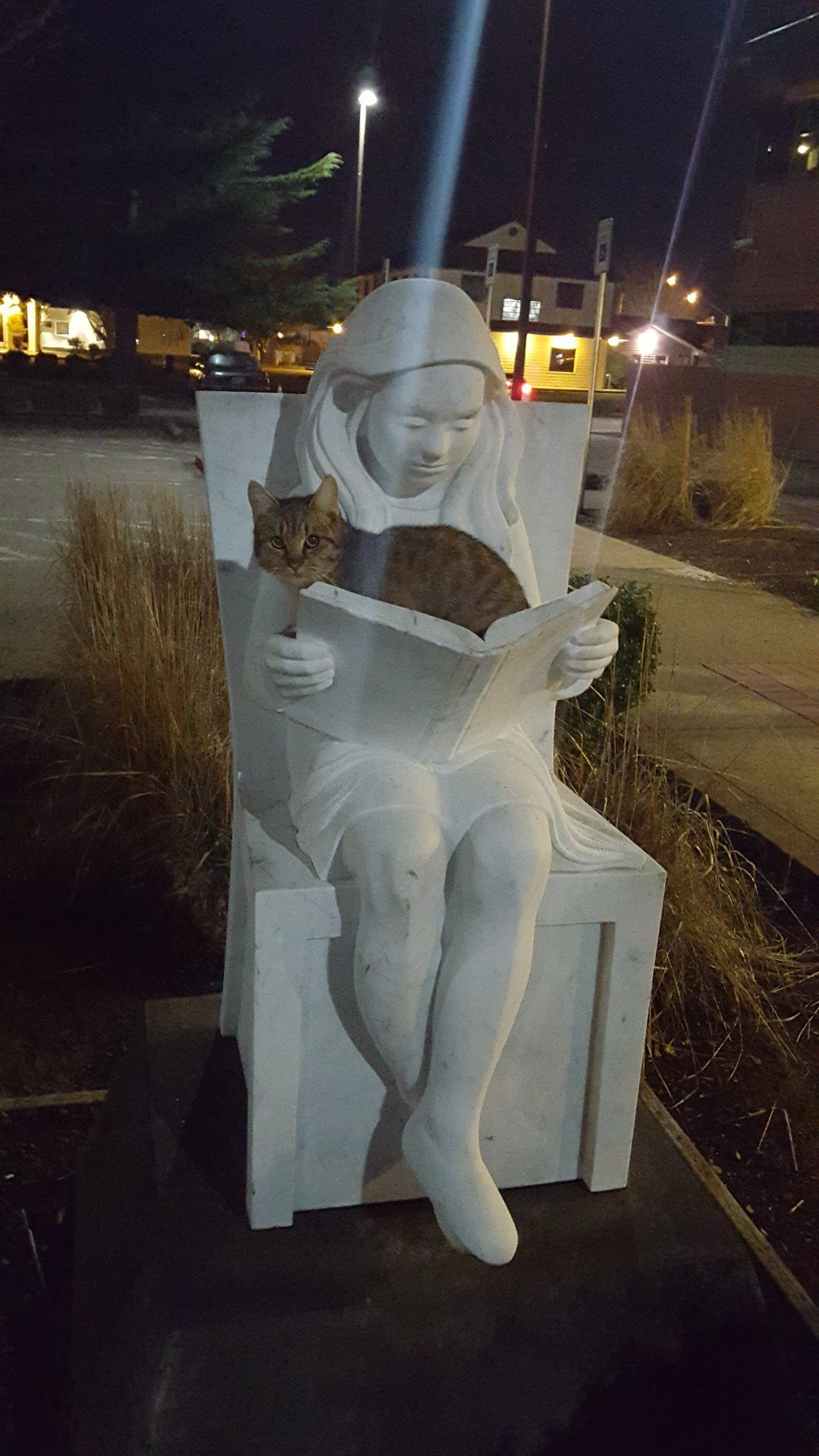 I guess being a statue isn't the only reason that girl is never going to move from that spot.