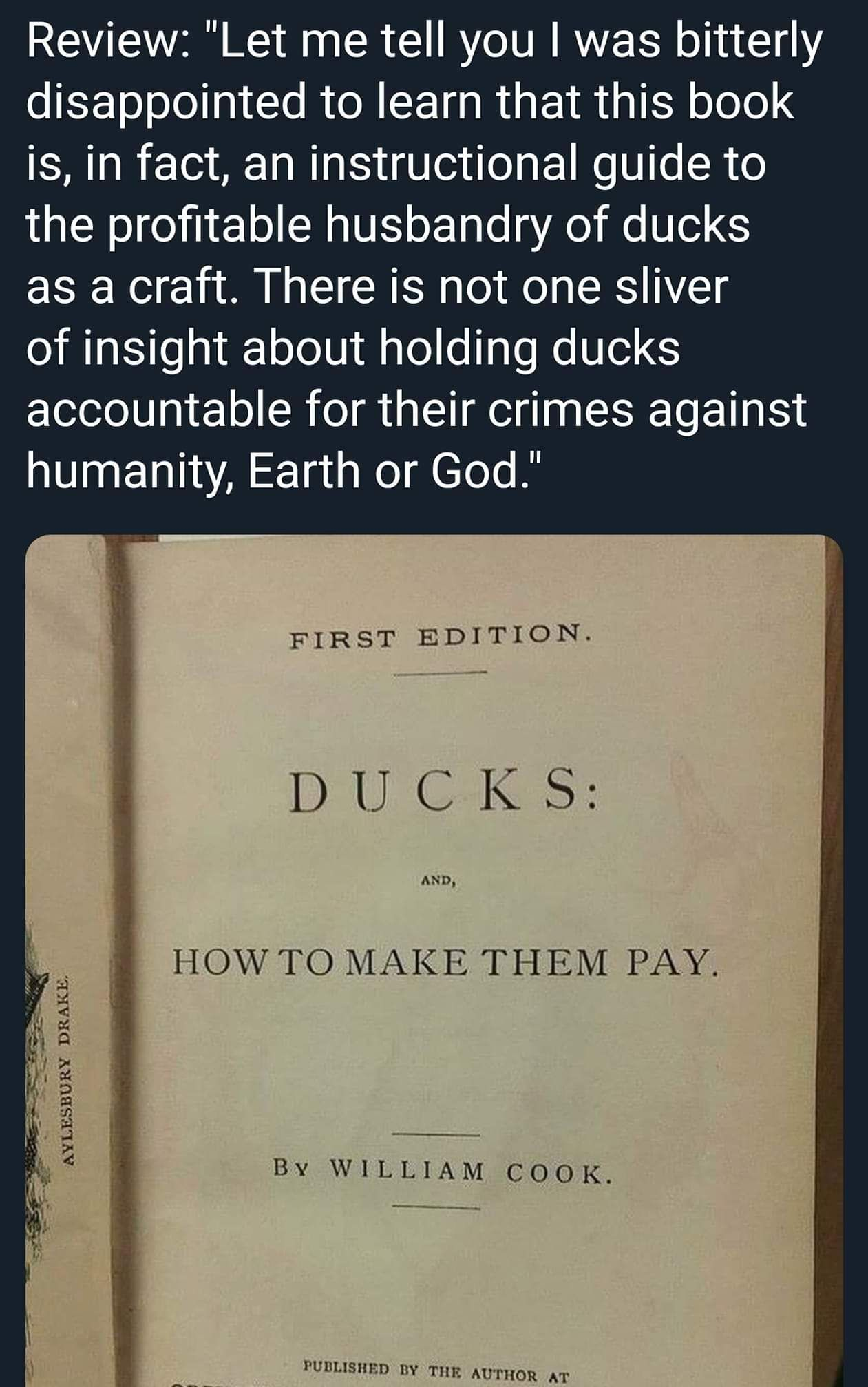 How to make ducks pay.