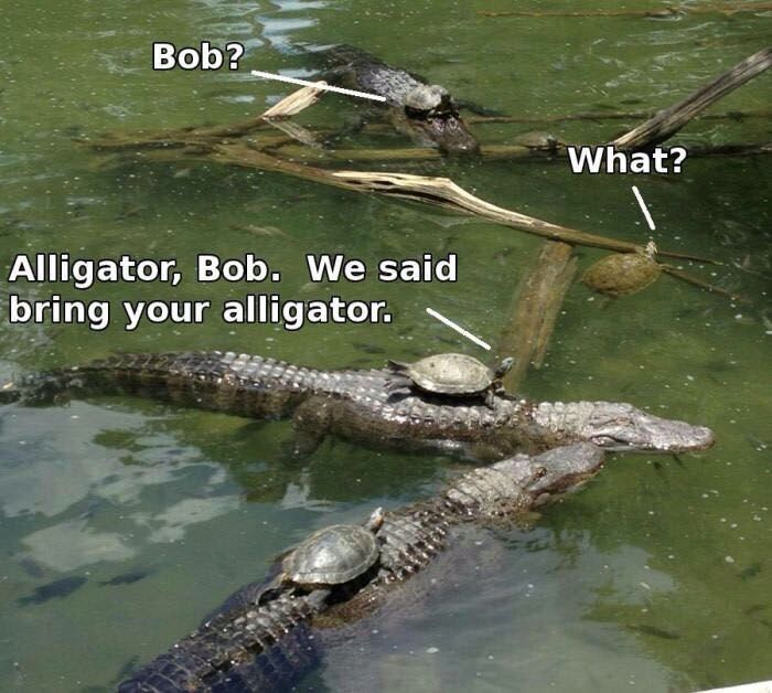 Not again bob ...