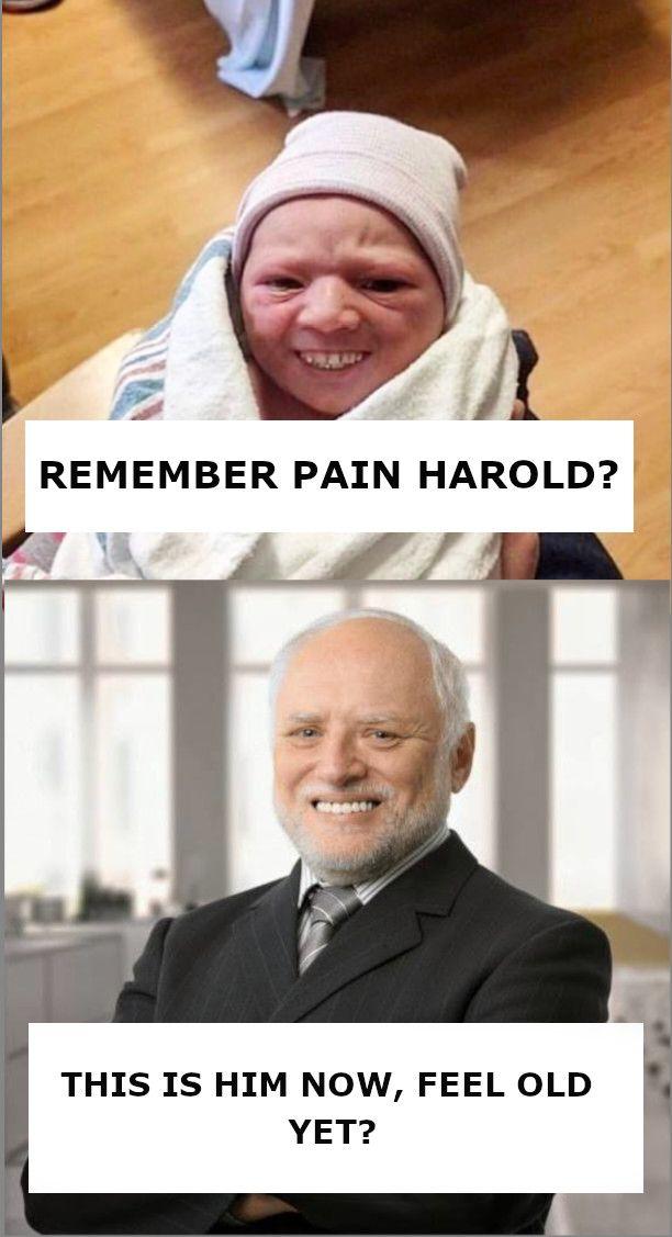 Young Harold