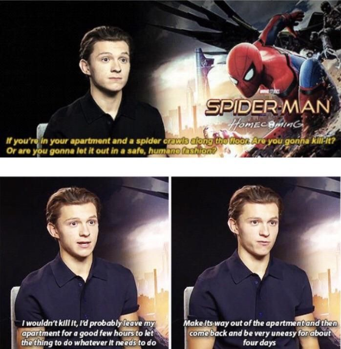 Tom Holland is all of us