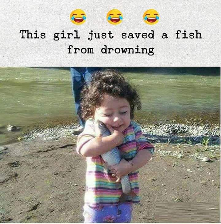 Save the fish !