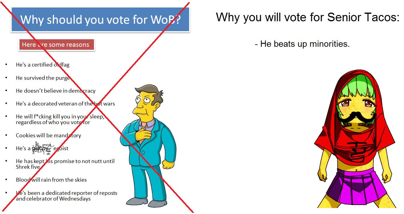 Vote for me lel