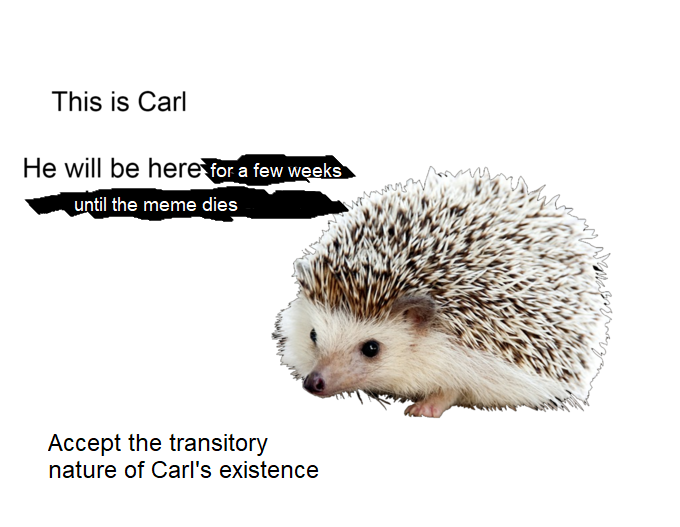 I lied. Here's the real truth about Carl.