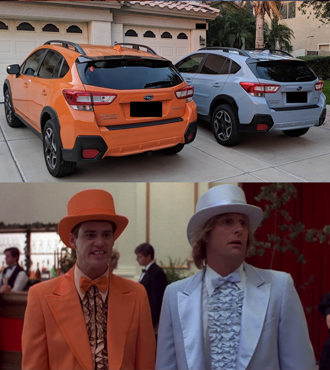Paint Jobs Accidentally Matched Dumb and Dumber