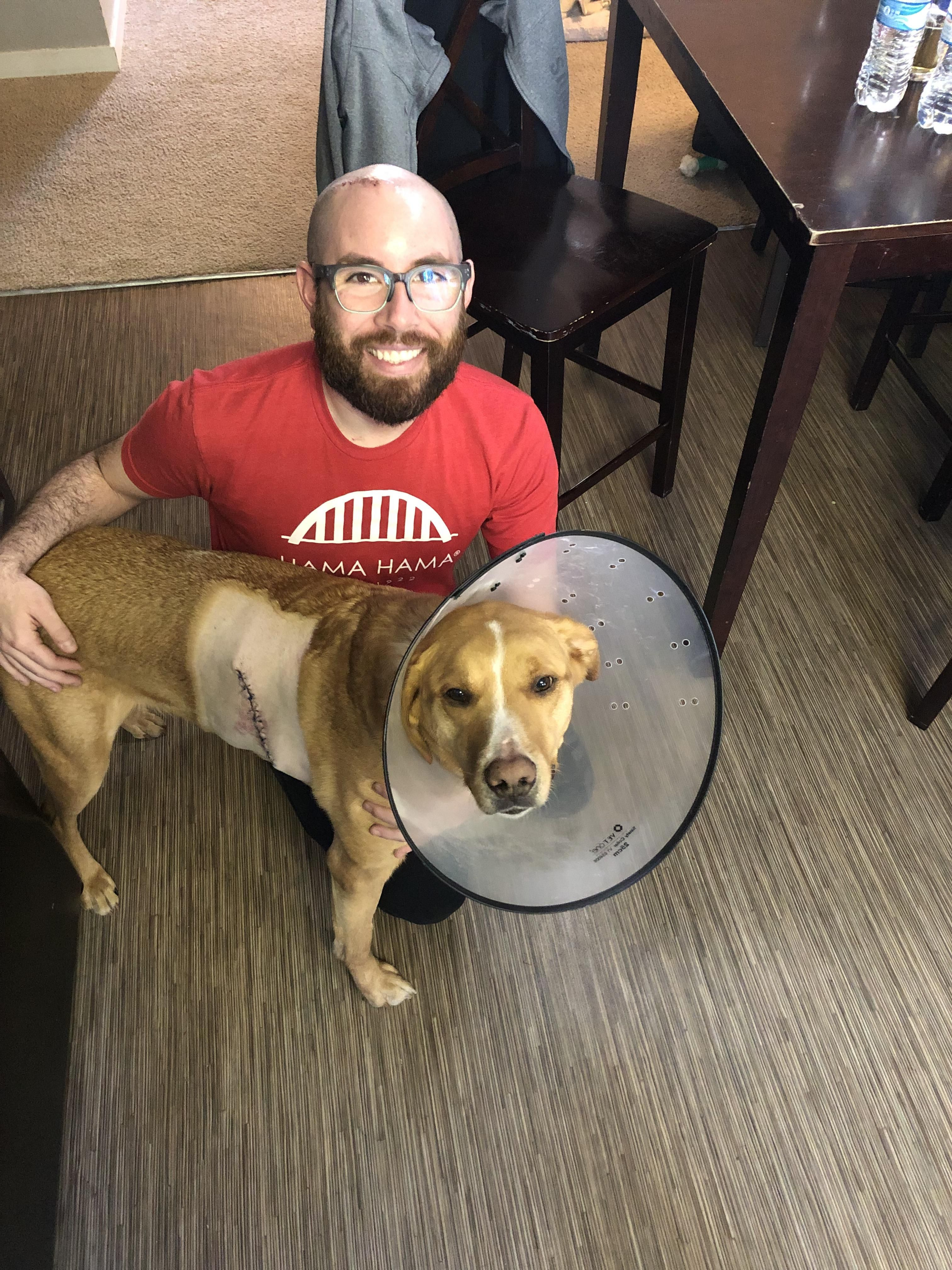My buddies dog wondering where my cone is after we both have surgery to remove cancer the same day. We also share the same name!