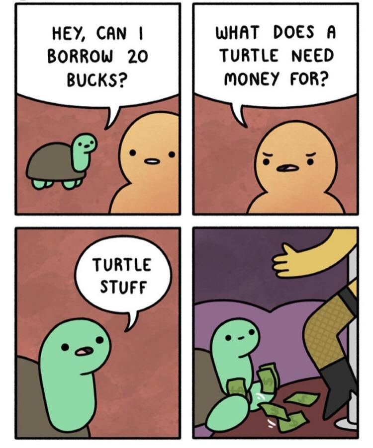 Turtle on the pulllllll