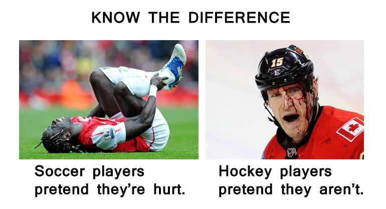 This is why im an hockey fan