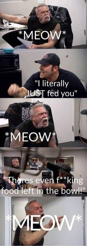 Every damn day...