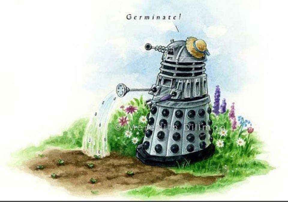 How daleks garden