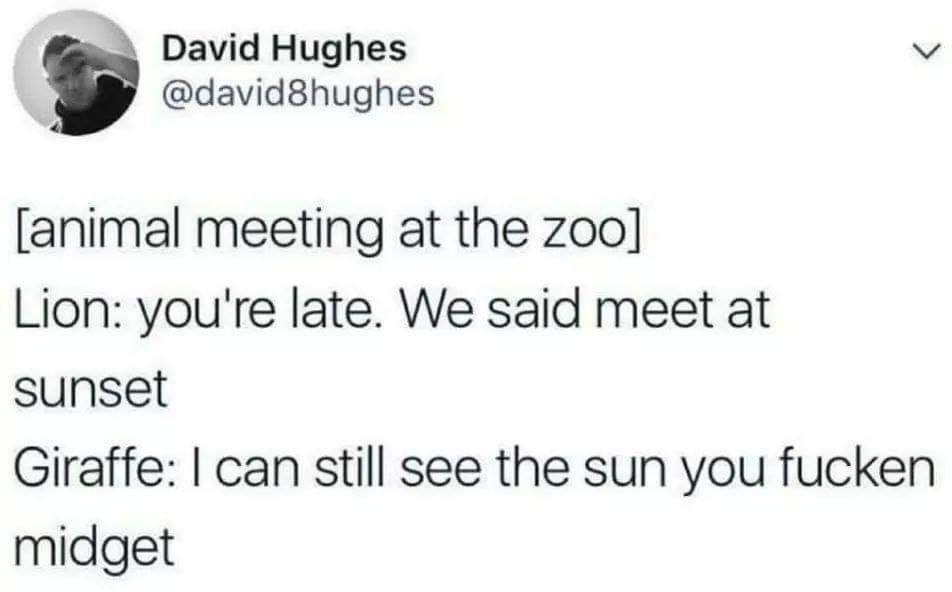 Hey, big guy. Sun's getting real low