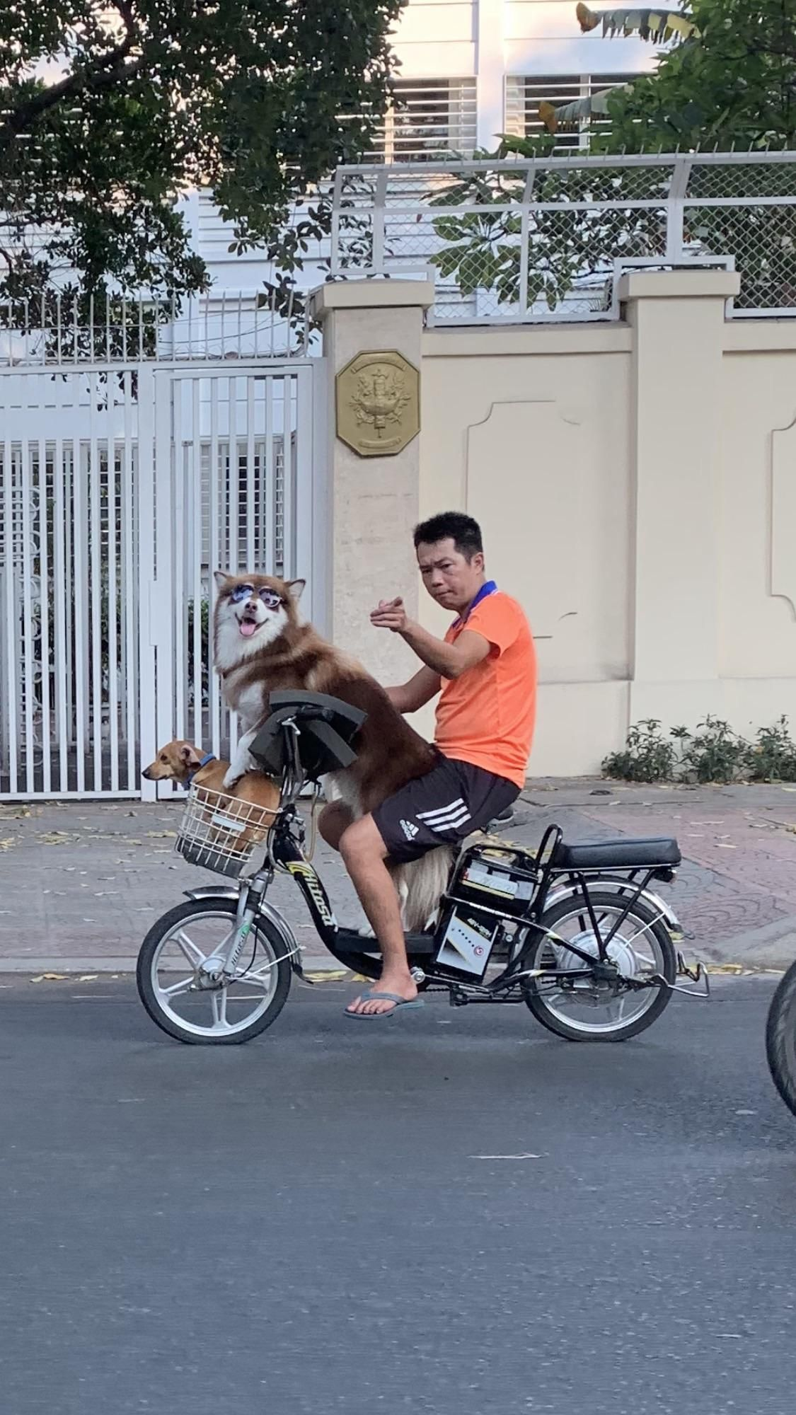 Riding through Vietnam when suddenly