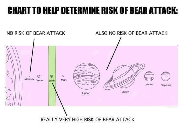 Chart to help determine your risk of a bear attack: