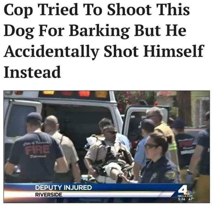 #caninelivesmatter
