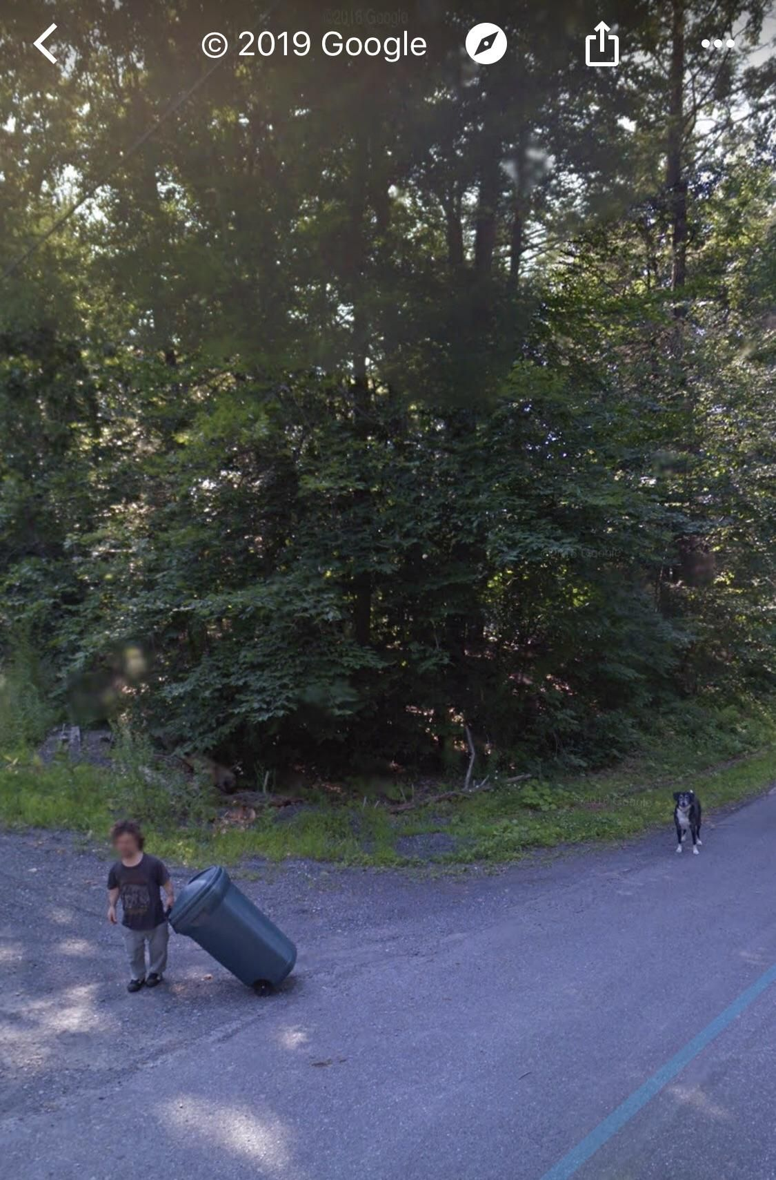 Did I just stumble across Peter Dinklage taking out the trash on Google Earth?!