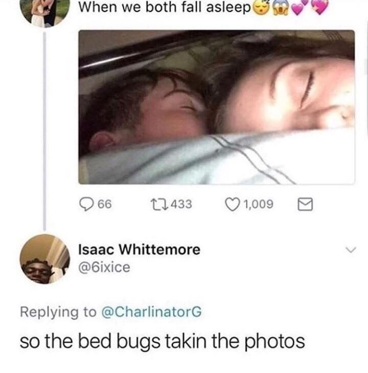 Invasion of bed bugs