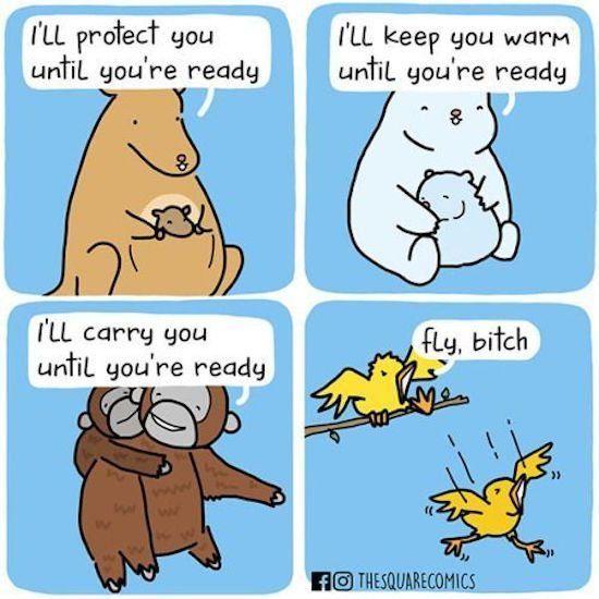 Poor bird..