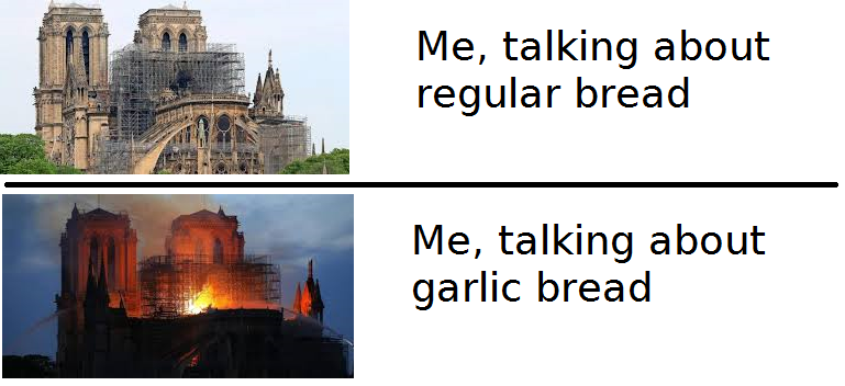 Notre Dame est morte pour nos memes