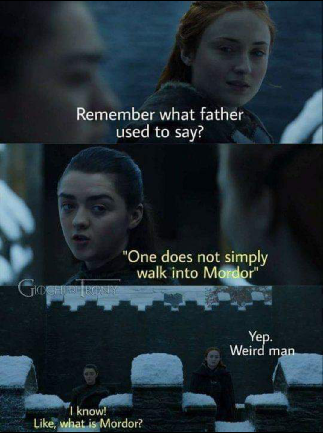 Don't put your LOTR in my GOT
