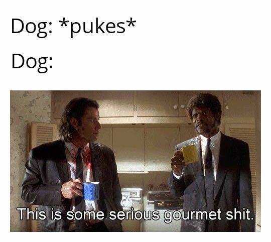Serious gourmet shiet