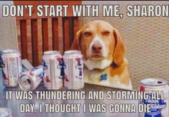 Thunderstorms are scary!