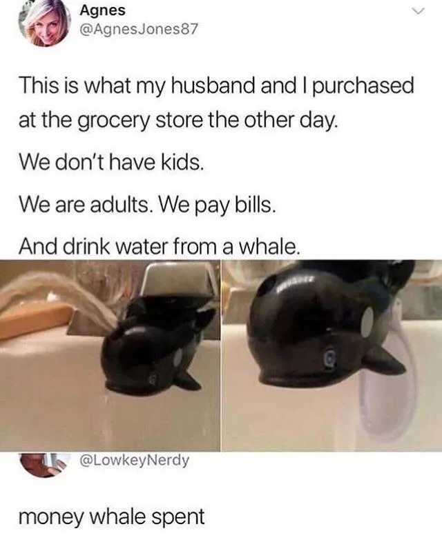 They had a whale of a time