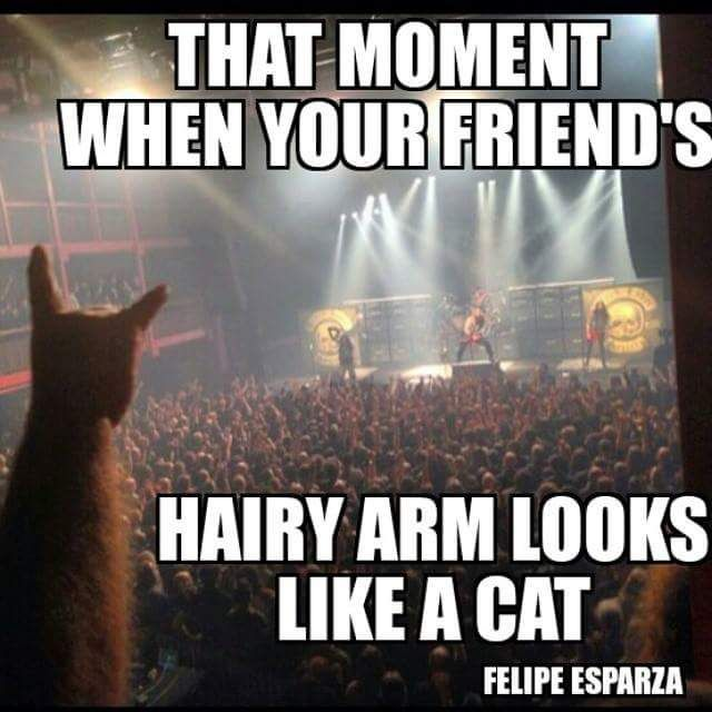 your friends hairy arm looks like a cat