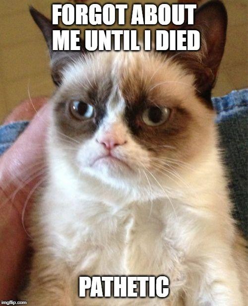 R.I.P grumpy the cat