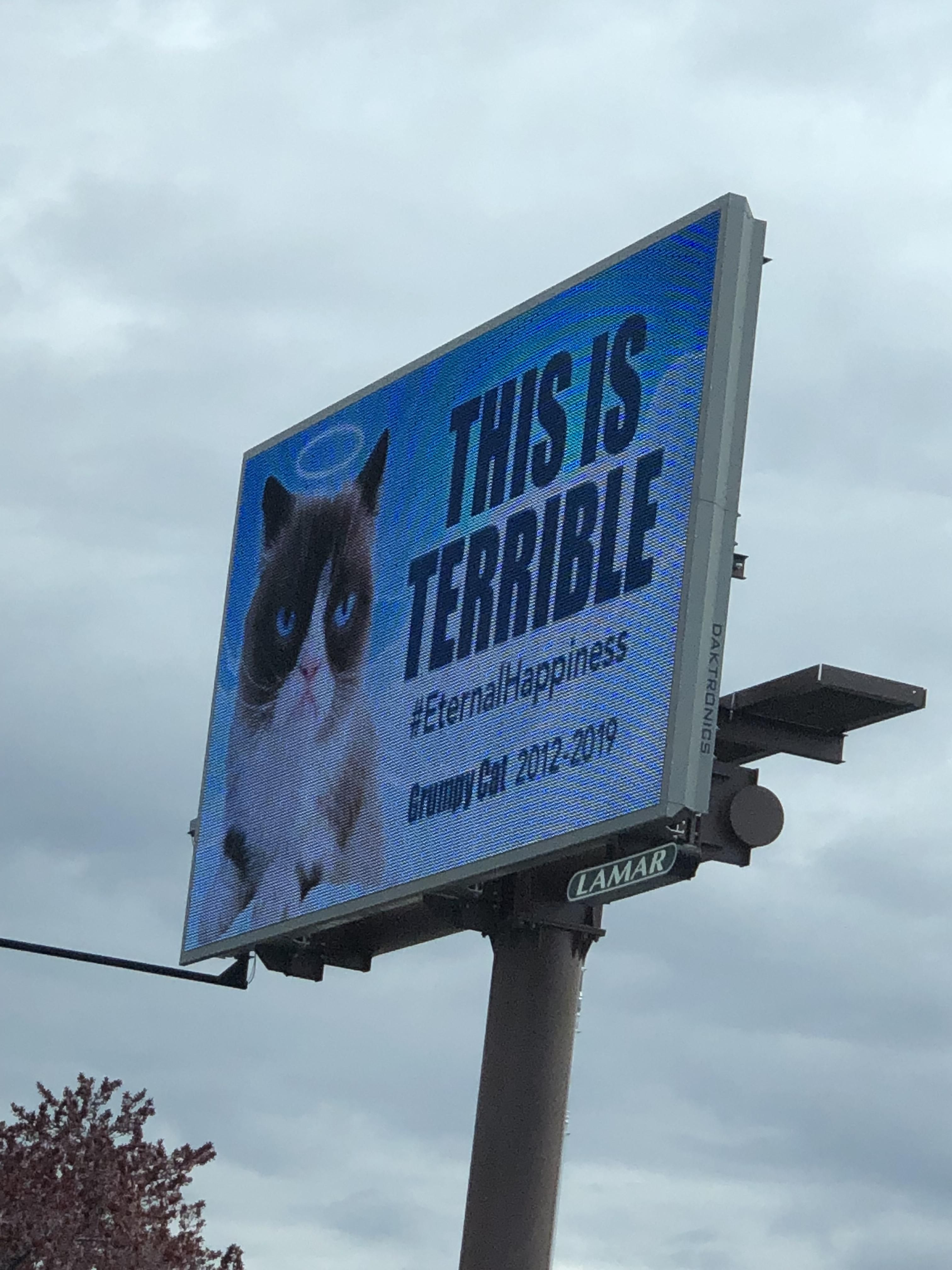 A billboard in my city paying respects to the greatest
