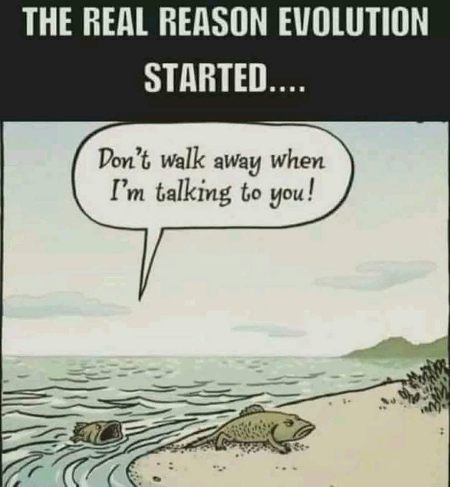 Real reason for the evolution