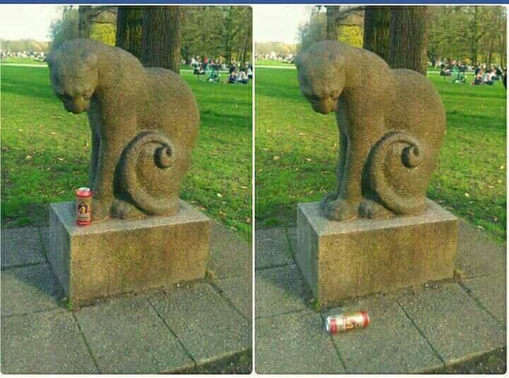 Typical cat being a cat...