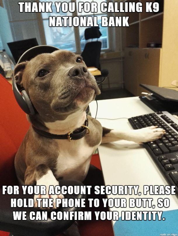 Dog Operators