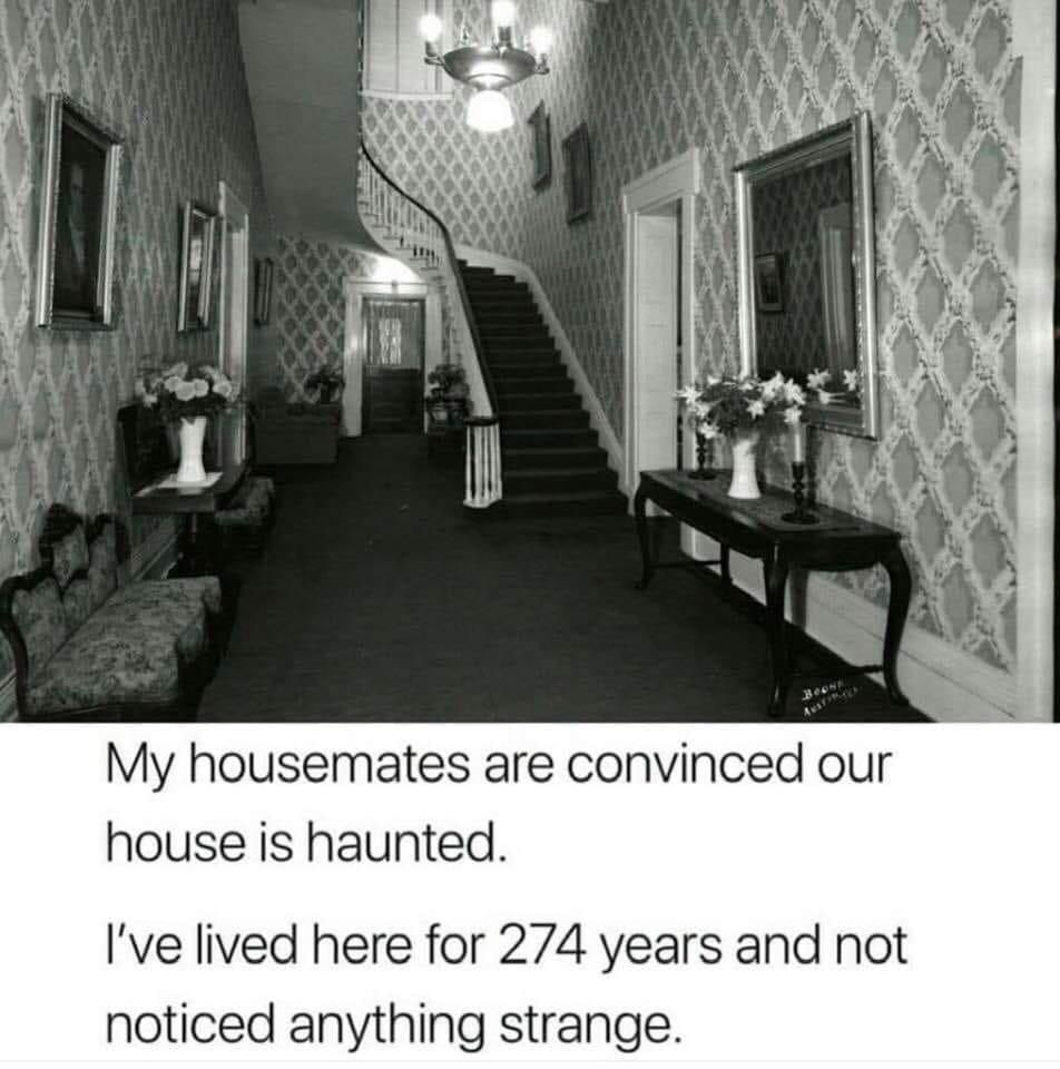 My housemates are convinced our house is haunted
