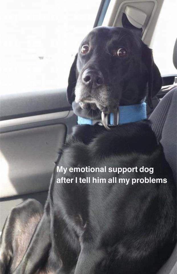 Got problems