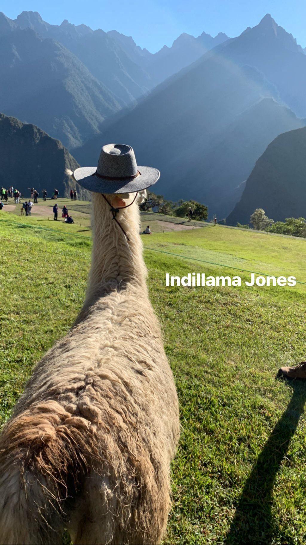 Meanwhile in Machu Picchu