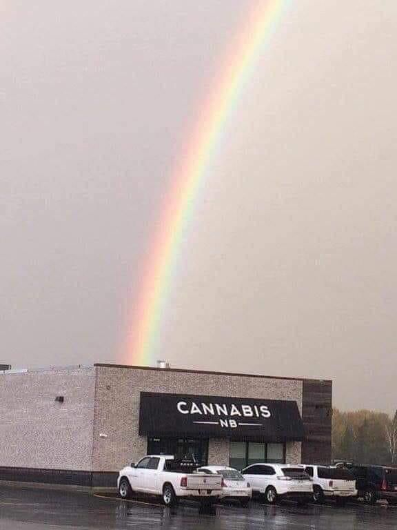 I finally found it. The pot at the end of the rainbow!