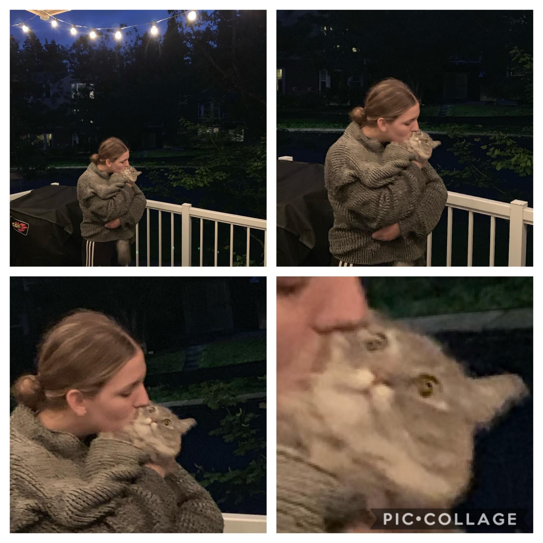 Sometimes my girlfriend loves my cat too much