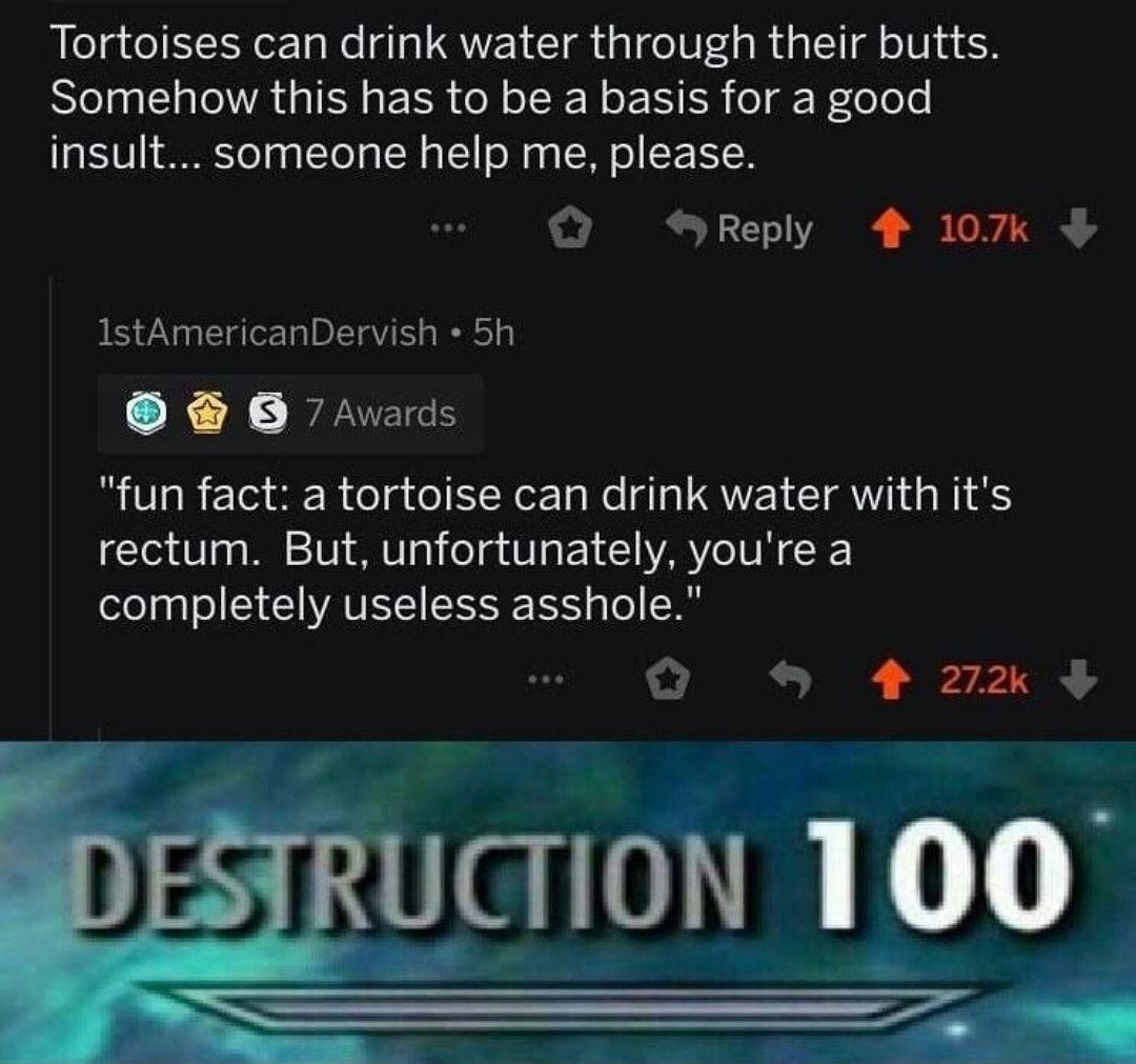 Insult 101