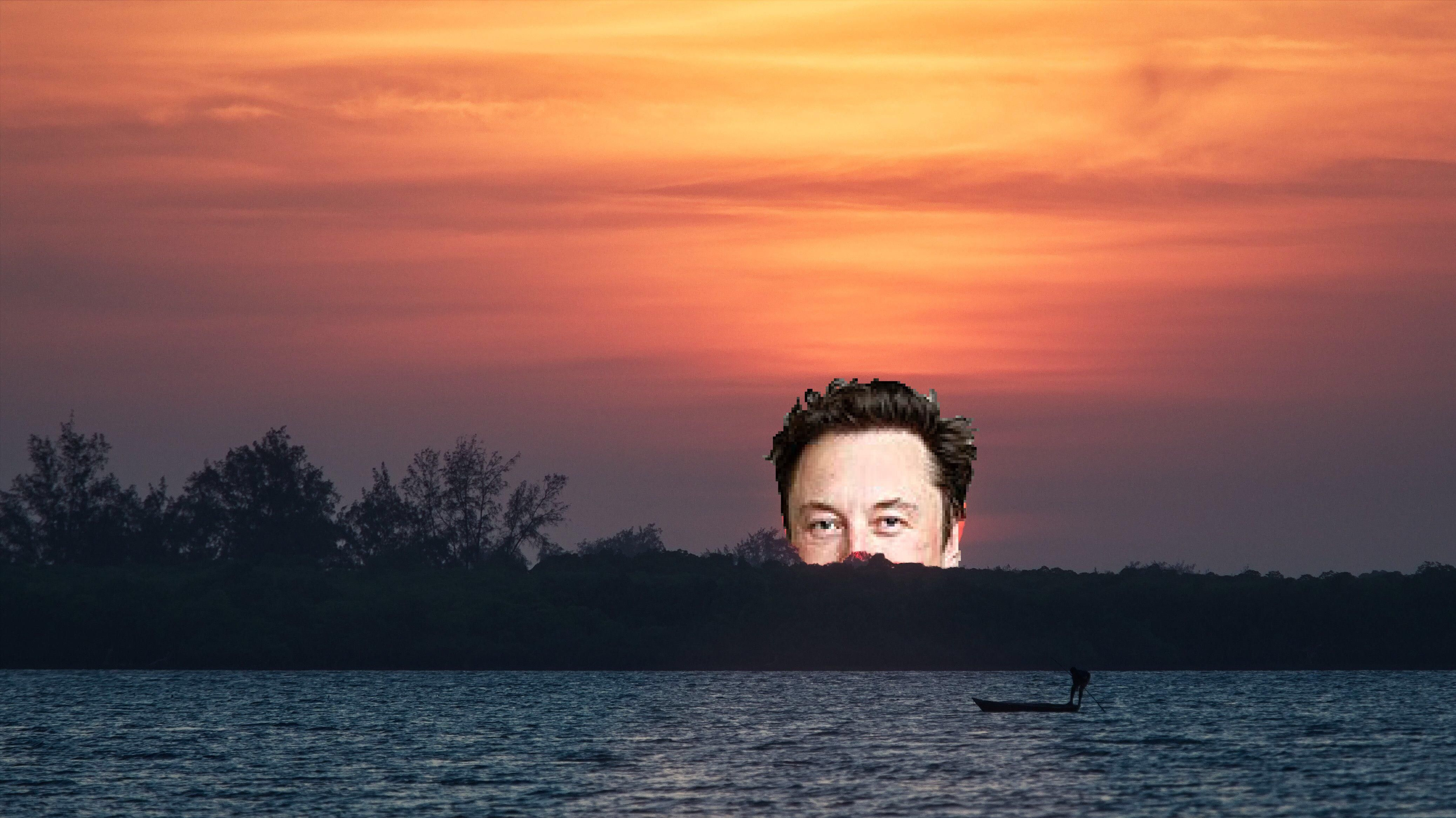 Elon Dusk