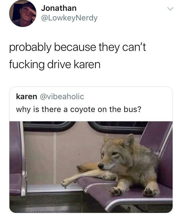 Coyotes can't drive