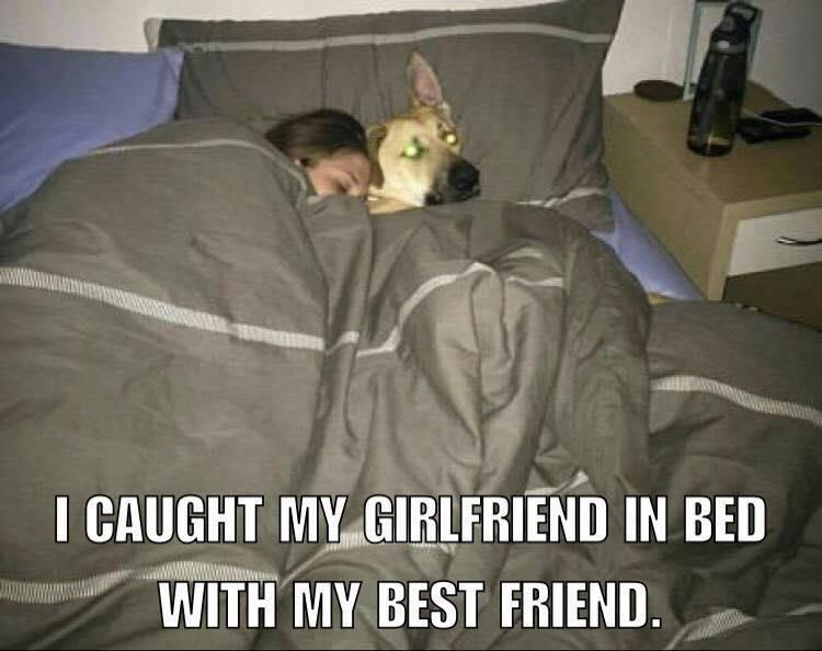 I caught my girlfriend in bed with my best friend.