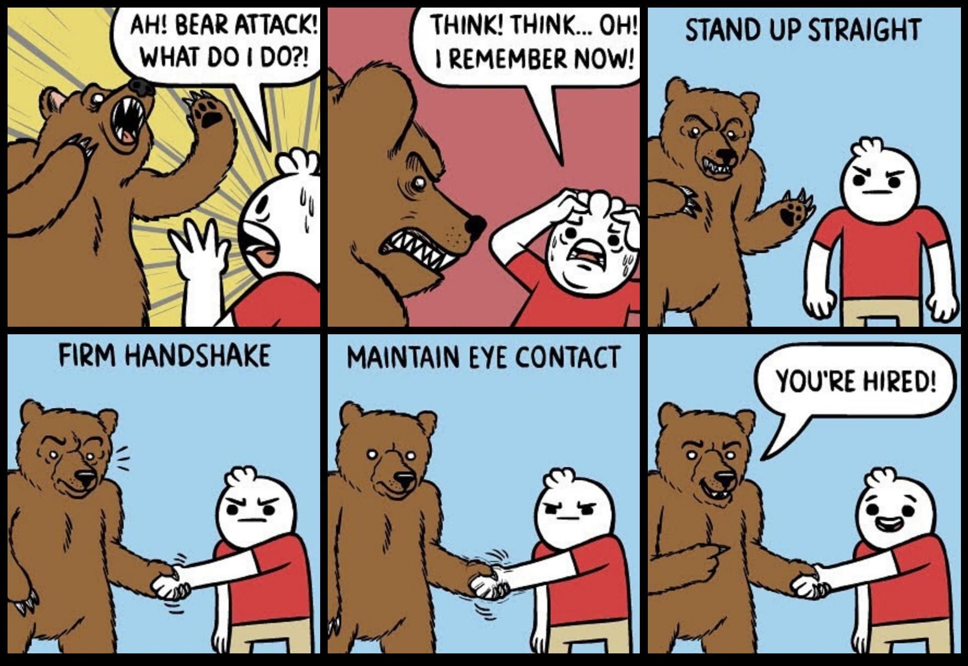 What to do during a bear attack