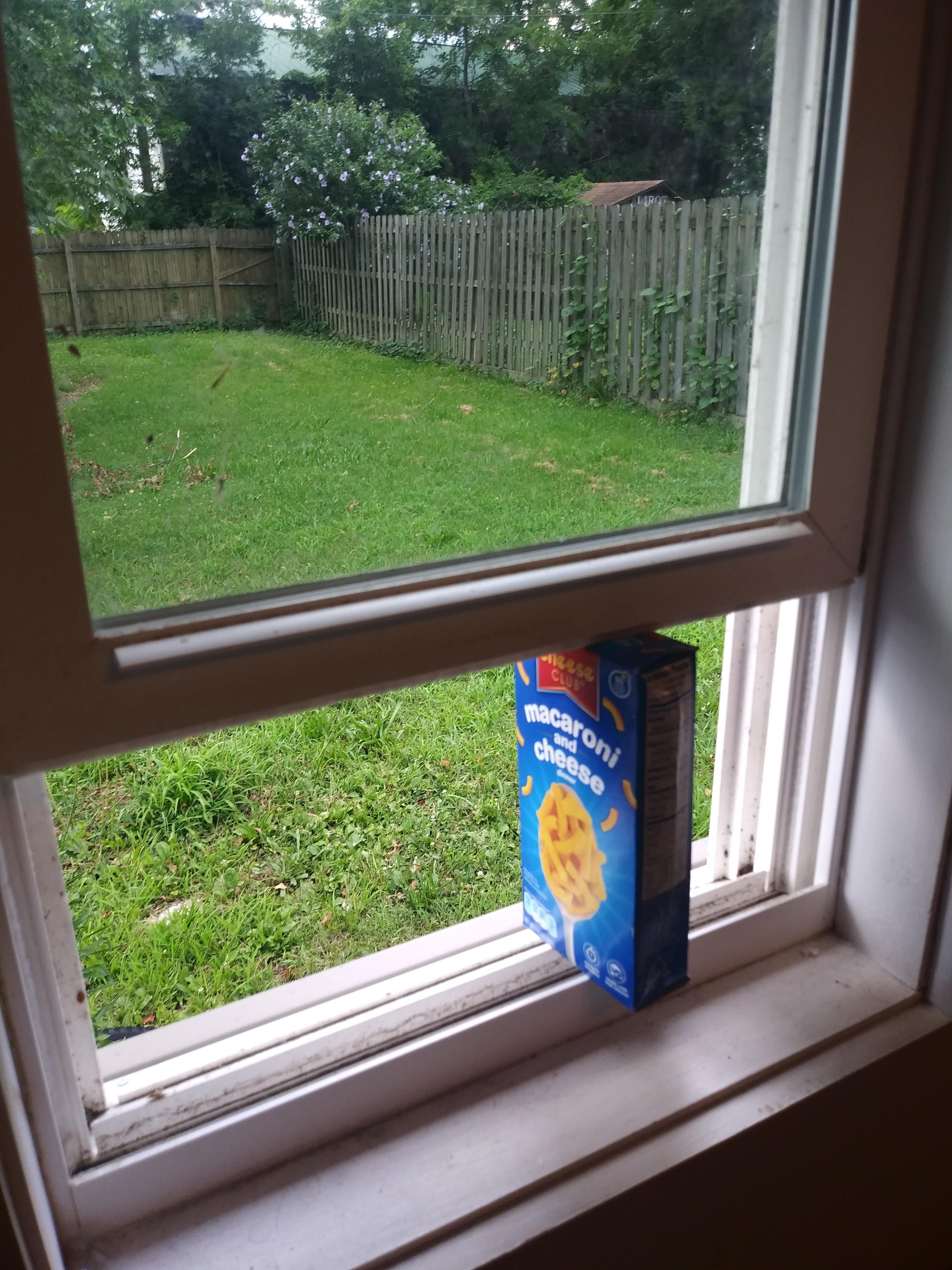 Mac now supports Windows