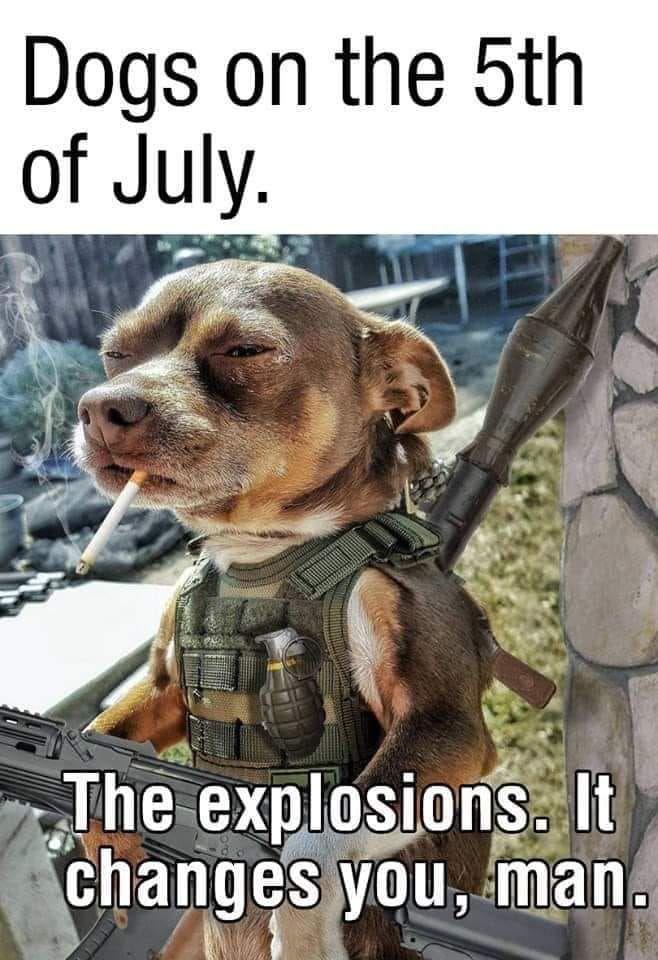 Lieutenant Pupper at you service!